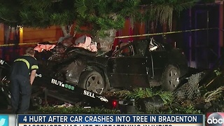 Four hurt after car crashes into tree in Bradenton - Video
