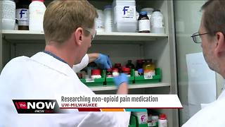UWM pain pill could mean less need for opioids - Video