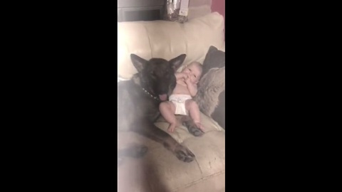 Baby spends precious moments with German Shepherd