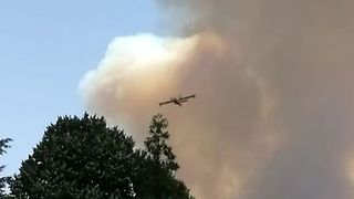 Aircraft Continue to Battle Blaze as More Than 60 Killed in Portugal Fires - Video