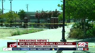 BPD found a fetus at Mill Creek Park - Video