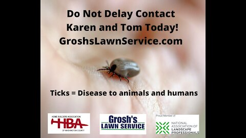 Ticks Falling Waters WV Lawn Care Service Berkeley County West Virginia