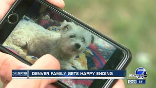 Family reunion for wrongfully claimed lost dog - Video