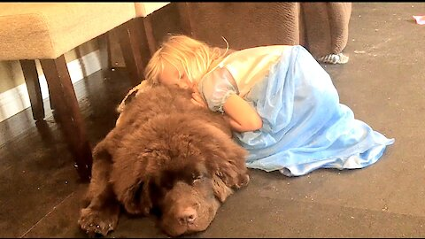 Little girl takes caring for her giant puppy very seriously