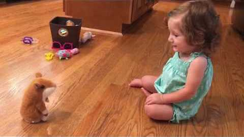 Little Girl Has A Tearful Reaction To A Repeating Toy Hamster