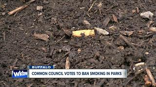 Buffalo Common Council votes to ban smoking in city parks - Video
