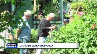 Buffalo holds annual garden tour citywide - Video
