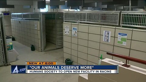 New animal shelter in Racine County nears completion, to offer better environment and care