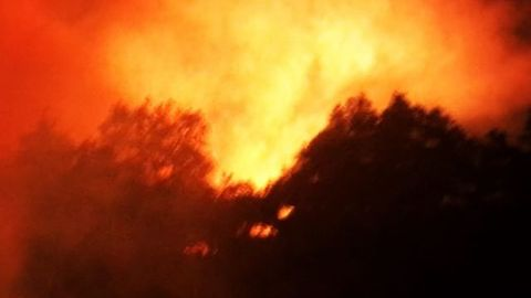 Lilac Fire Destroys More than 150 Structures
