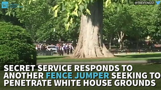 Secret Service Responds To Another Fence Jumper Seeking To Penetrate White House Grounds - Video