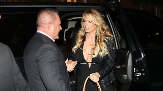 Another Trump Lawyer Was Involved In The Stormy Daniels Legal Battle