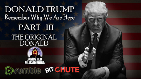 [Part 3] President Trump: THE ORIGINAL DONALD! Remember Why We Are Here Pro-Trump Video Series