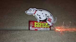 Hilarious Dog-Shaped Firework Poops When Lit - Video