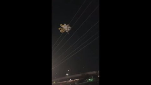 Woman releases balloons under power lines causing a citywide blackout