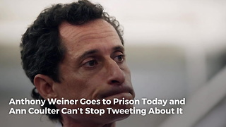 Anthony Weiner Goes to Prison Today and Ann Coulter Can't Stop Tweeting About It - Video
