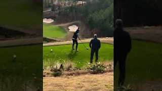 Golf Loving Groom-to-Be Chooses Perfect Spot For Proposal - Video