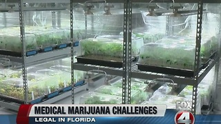 Medical Marijuana Challenges