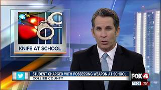 Palmetto Ridge student arrested for bring a knife to school - Video