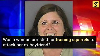 Woman Arrested for Training Squirrels to Attack Her Ex-Boyfriend?