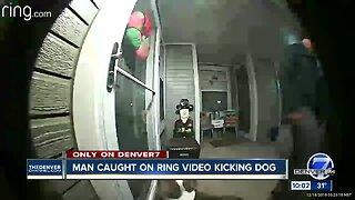 Man caught on Ring camera kicking dog is charged with animal cruelty