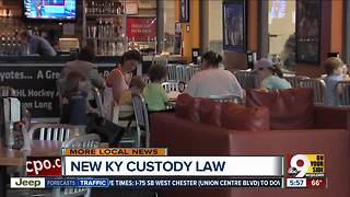 New law makes it easier for Kentucky families to split custody - Video