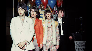 The Beatles' company banked over £50 million last year