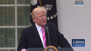 Trump heralds in thanksgiving with turkey pardon - Video