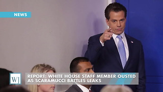Report: White House Staff Member Ousted As Scaramucci Battles Leaks