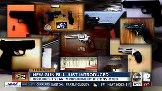 City Council to introduce new gun bill - Video