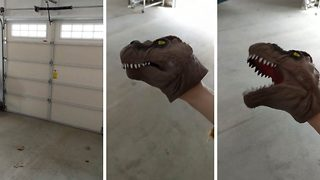 Garage door squeals like T Rex from Jurassic Park  - Video