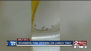 Students find spiders on school food tray - Video