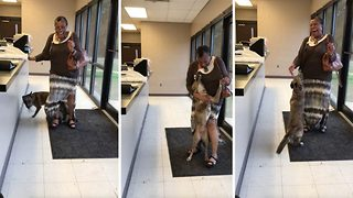 Ecstatic owner giggles with joy after being reunited with lost puppy