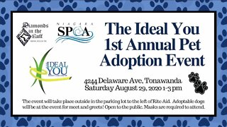 THE IDEAL YOU WEIGHT LOSS CENTER SPONSORS PET ADOPTION EVENT