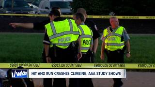 Hit and run deaths hit record high, AAA reports - Video
