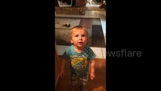 Toddler stops mid-sentence to break into epic dance moves when the beat drops - Video