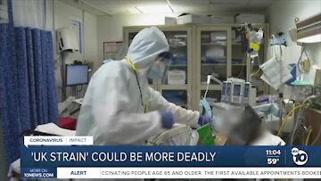 'UK strain' of COVID-19 could be more deadly