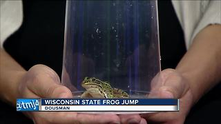 62nd Annual Wisconsin State Frog Jump - Video