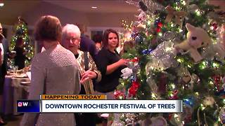 Downtown Rochester Festival Of Trees - Video