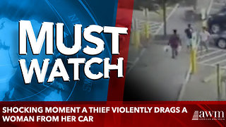Shocking moment a thief violently drags a woman from her car - Video
