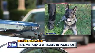 Canton man mistakenly attacked by police K-9 wants answers - Video