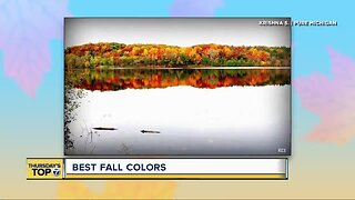 Thursday's Top 7: Best fall colors