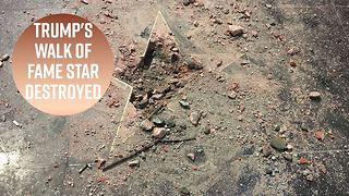 Trump's Hollywood Star destroyers unite - Video