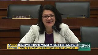 Rashida Tlaib aims to separate credit scores from determining auto insurance