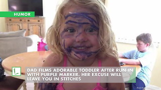 Dad Films Adorable Toddler After Run-In W/ Purple Marker. Her Excuse Will Leave You In Stitches - Video