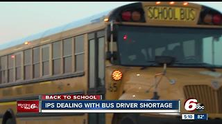 IPS dealing with bus driver shortage - Video