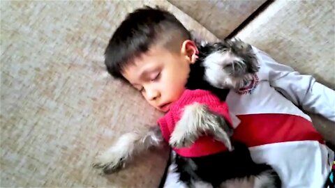 Playtime ends adorably for young boy and his new puppy
