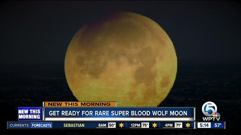 South Florida stargazers eagerly await Sunday's rare 'super blood wolf moon'