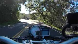 Biker Has Scary Near Miss With Deer - Video