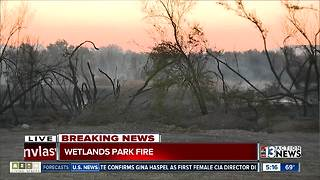 Update on fire at Wetlands Park