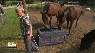 Small Towns: Horse Therapy
